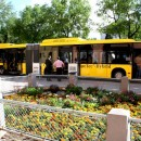 Mercedes hibrid busz - Kecskemét