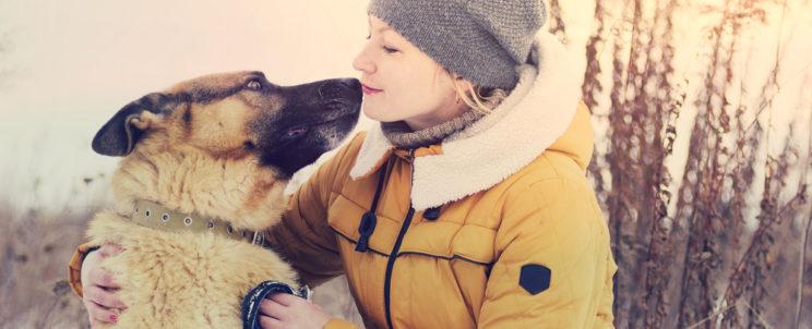 Mi alapján válasszunk nyakörvet kutyusunknak?