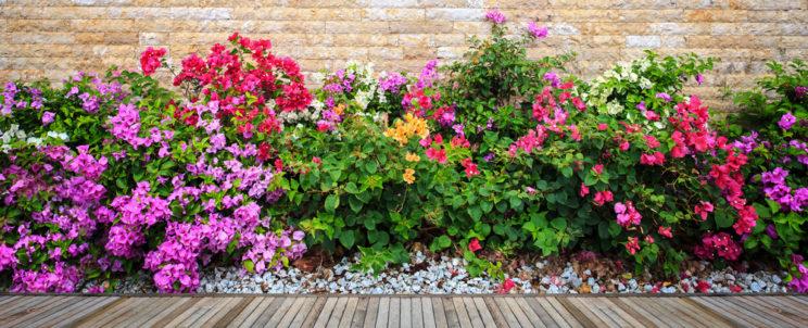 Itt a tavasz, a kertészkedés ideje!