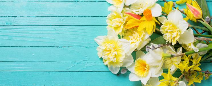 Indítsa a nyarat friss, színes virágokkal!