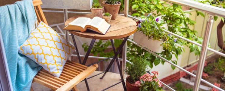 A balkonnövényekről bővebben