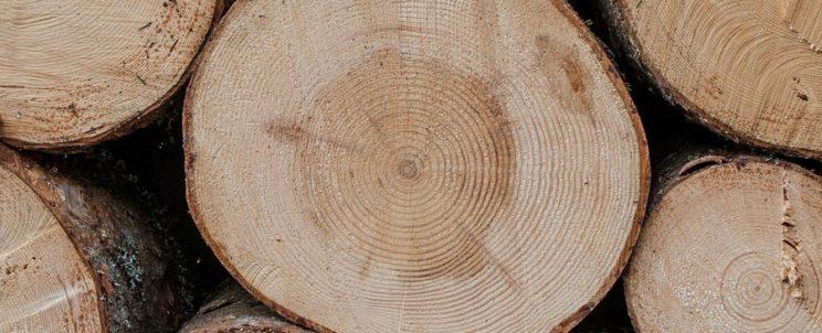 Erdészeti, faipari munkálatait teljesítse könnyedén kiváló erdészeti és faipari gépekkel!